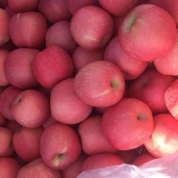 Good Quality Full Red Color 2020 Year New Crop FUJI Apple