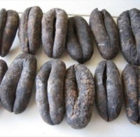 Dry sea cucumber best selling products in South Africa healthy foods