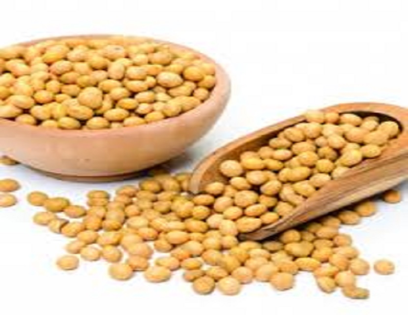 NON GMO DRIED CHEAP SOYBEANS FOR SALE