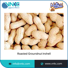 2016 Hot Selling Wholesale Peanuts in Shell/Groundnut in Shell Available
