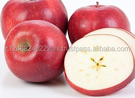 Fresh Red Delicious Apples (Box of 48 Apples) Wholesale