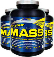Promotion prices MHP - Up Your Mass