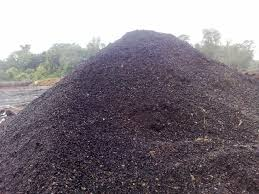 Palm Kernel Shell (PKS) For Sale