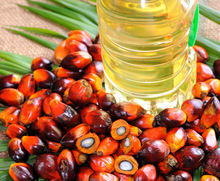 Cheap Palm Oil For Export