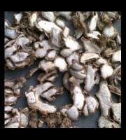 Sand Ginger or Alpinia Galanga. Oven Dried Quality. best price and quality
