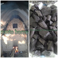 Indonesia BBQ Charcoal Supplier