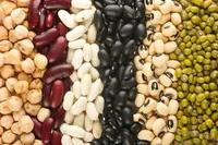 GREEN MUNG BEANS SPARKLING RED KIDNEY BEANS BLACK PEAS WHOLE CHICKPEAS SPLIT CHICKPEAS WHEAT FROM UKRAINE