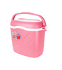 PLASTIC ICE COOLER with BEST PRICE 35L
