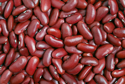 2016 Crop Ukraine Red Kidney Bean, Dark Red Bean