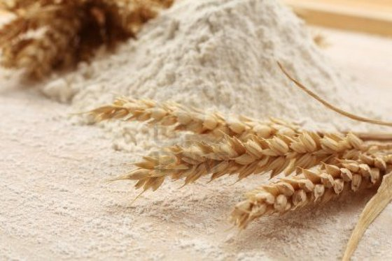 Wheat Flour for Sale (Cheap)