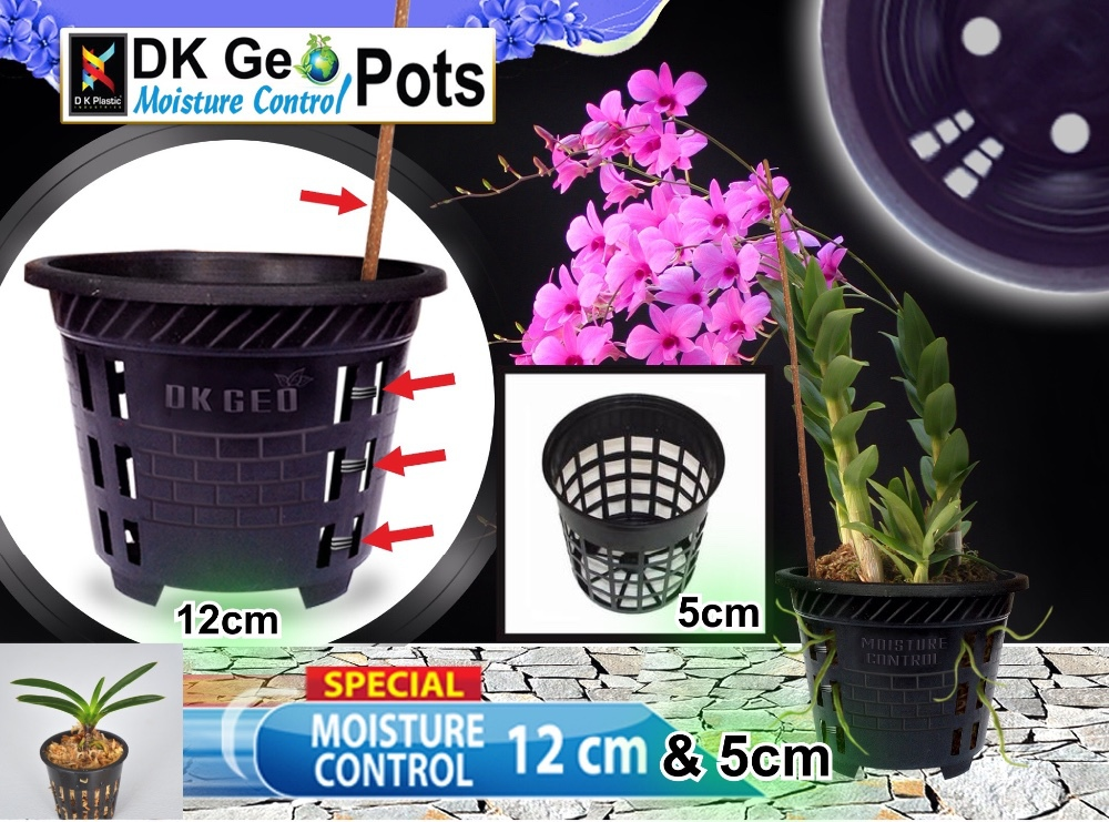 Net Pots For Orchid Plants