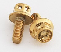 Golden color Titanium Coating Bolts and nuts for Honda WAVE