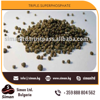 Highly Concentrated Phosphorus Fertilizer Triple Superphosphate for Buyers