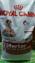 Royal Canin Medium Starter Mother and Babydogs Dry Dogs