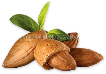 100% Pure Sweet Almond Carrier Oil For Aromatherapy
