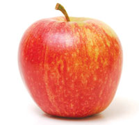 fresh royal gala apple(hot sale)