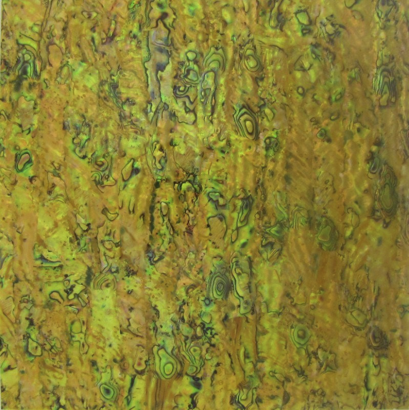Paua Shell Laminate Yellow - 200x200mm - 0.3mm thick Gloss Sheet - Haliotis Iris (New Zealand Abalone)