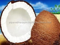 Pollachi matured coconut