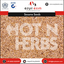 Importers of Sesame Seeds for Multiple Health Benefits