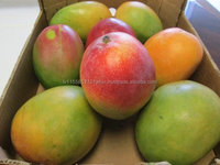 Fresh Pakistani Mangoes / Fresh Fruits