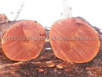 AZOBE, EKKI Lophira Alata LOGS or TIMBER - LUMBER - BOARDS
