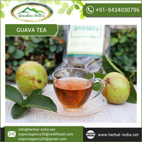 Popular Brand Guava Leaf Tea for Digestion Related Problems at Low Price