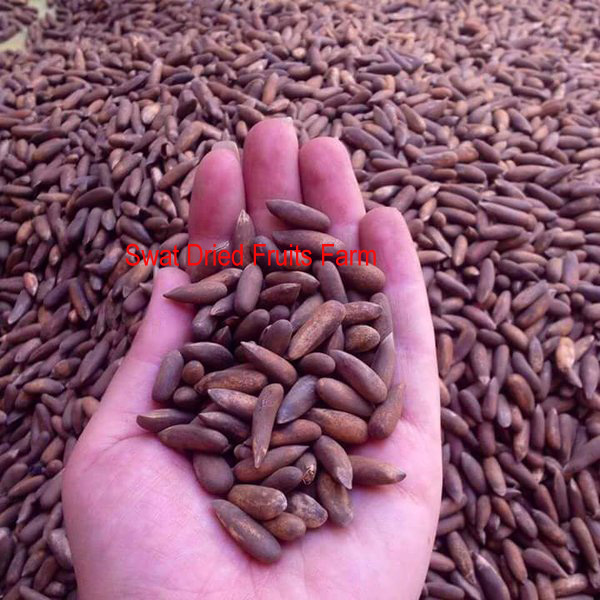 Edible Pine Nuts/Cedar Nuts/Chilgoza