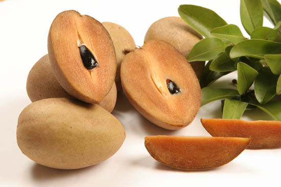 Top Quality Sapodilla or Sapota (chikoo)