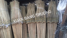 palm leaf stick broom