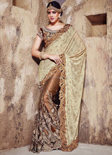 Eye-Catching Beige Net With Lycra Pallu Saree/famous indian saree designers