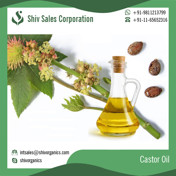 Pure Castor Oil in Bulk