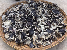 Dried Black Fungus; Champignon Noir; Mu-Err Pilze, Wood Ear Mushroom