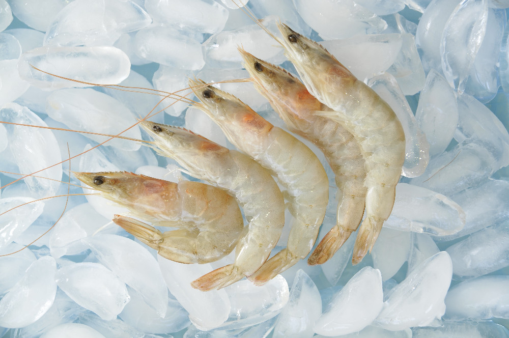 HOSO FARMED RAISEN VANNAMEI SHRIMP