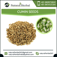 New and Fresh Quality Cumin Seeds from Top Food Manufacturer Company