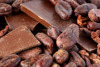 Organic Cocoa Beans, Certified Premium quality for sale Good Price