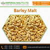 Premium Quality High Nutritive Dried Animal Feed Barley for Sale