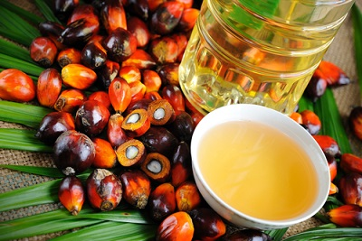 Best Grade Palm Oil