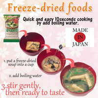 Hot-selling dried chicken freeze dried with high-security made in Japan