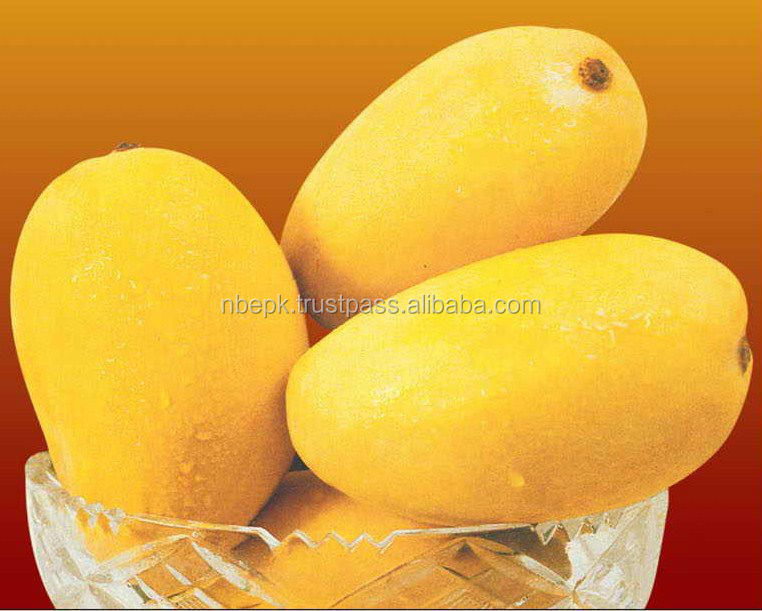 Fresh Mango from Pakistan with Approved EU Quality Standards