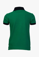 perfect dark green and black collar combination of polo