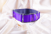 Dog Collar Martingale, 5 cm wide, dog collar for Greyhound, Whippet...