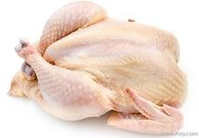 high quality Halal whole frozen chicken and part for sale