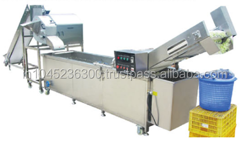 Cabbage Dicing & Washing Production Line (CDWP-1)