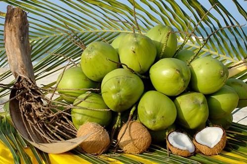300ml Watermelon Coconut Water