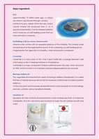 High quality Japanese skin care products Sakuya SGE Cream for clear skin other cosmetics available