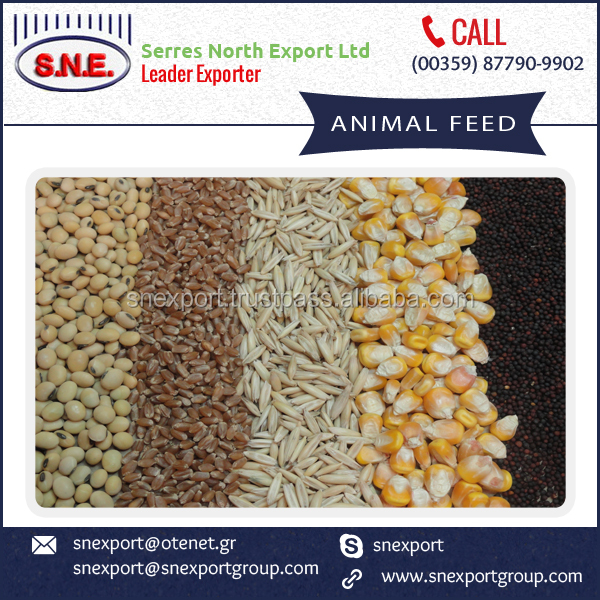 Mixed Grain Meal for Animal Feed at Competitive Rate