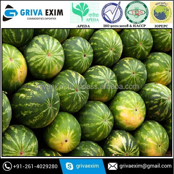 High Vitamin Hybrid Watermelon