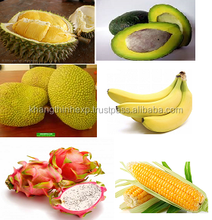 Fresh Tropical Fruit Sweet best price From Vietnam