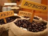Good Arabica coffee with high quality for importer