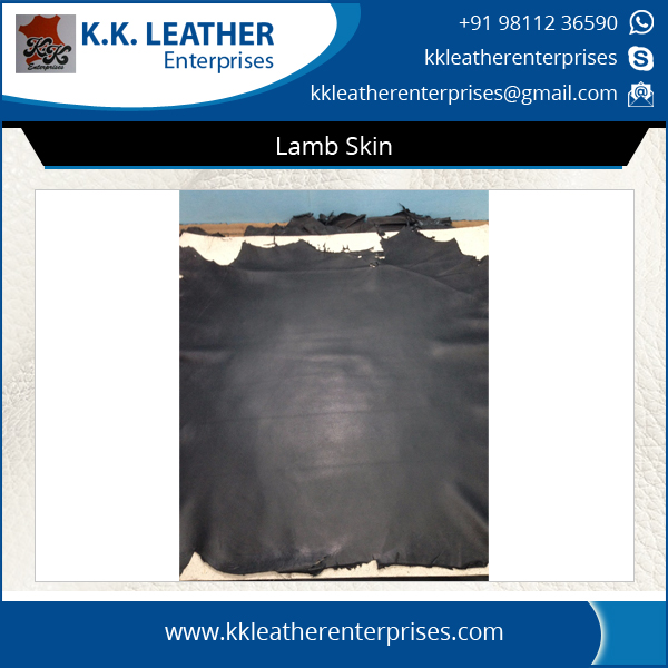 Good Quality Natural Lamb/Sheep Skin Leather at Wholesale Price